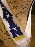 Senior sash, cheerleading sash, class of 2019, cheerleeder sash, homecoming sash, graduation shirt, prom queen,captain sash, bridesmaid sash
