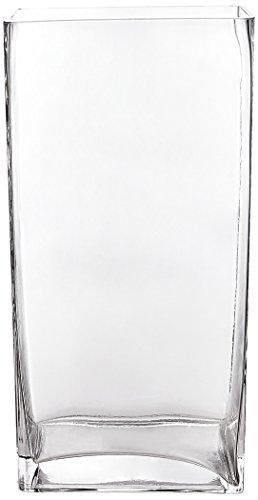 WGV Clear Rectangle Block Glass Vase, 4 by 6 by 12-Inch