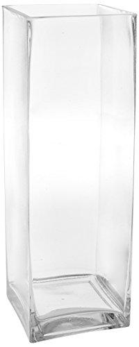 WGV Clear Square Block Glass Vase, 4 by 12-Inch
