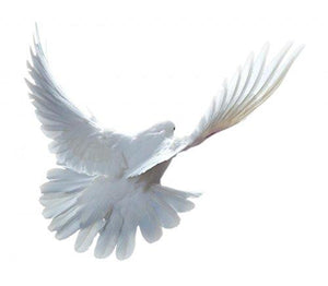 Wallmonkeys A Free Flying White Dove Wall Decal Peel and Stick Graphic WM136361 (30 in W x 26 in H)