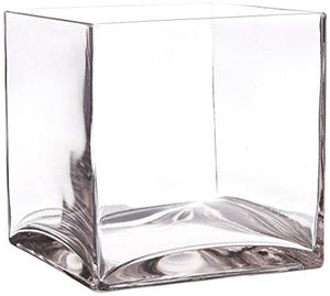 WGV Clear Square Cube Glass Vase, 7-Inch