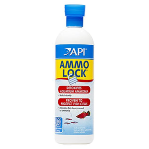 Api Ammo-Lock Freshwater And Saltwater Aquarium Ammonia Detoxifier 16-Oz Bottle