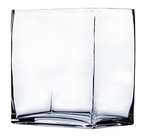 Wgv Clear Rectangle Block Glass Vase, 4 By 6 By 6-Inch