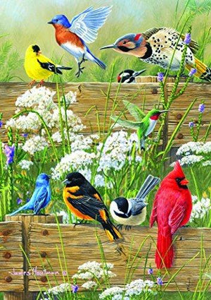 Buffalo Games Large Piece Family: Songbird Menagerie - 300 Piece Jigsaw Puzzle By Buffalo Games