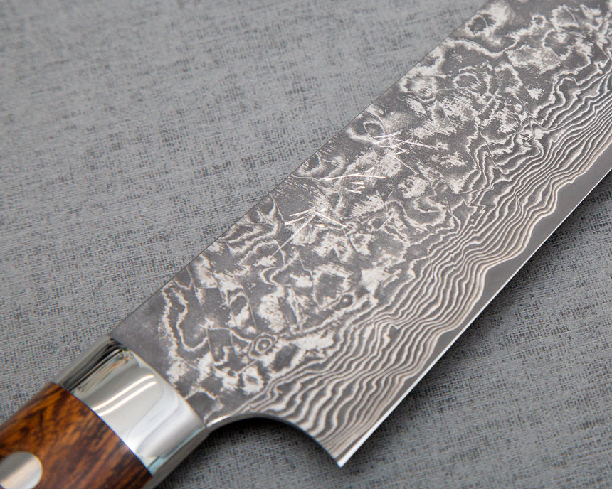Takeshi Saji R2/SG2 Black Damascus 210mm Gyuto with Ironwood Handle