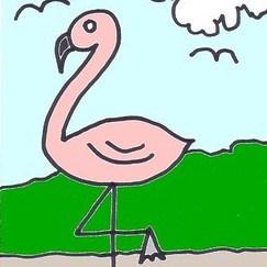 Dessin flamant rose facile