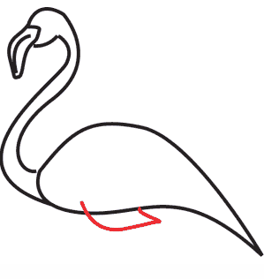 tutoriel facile pas-à-pas dessin flamant rose aile
