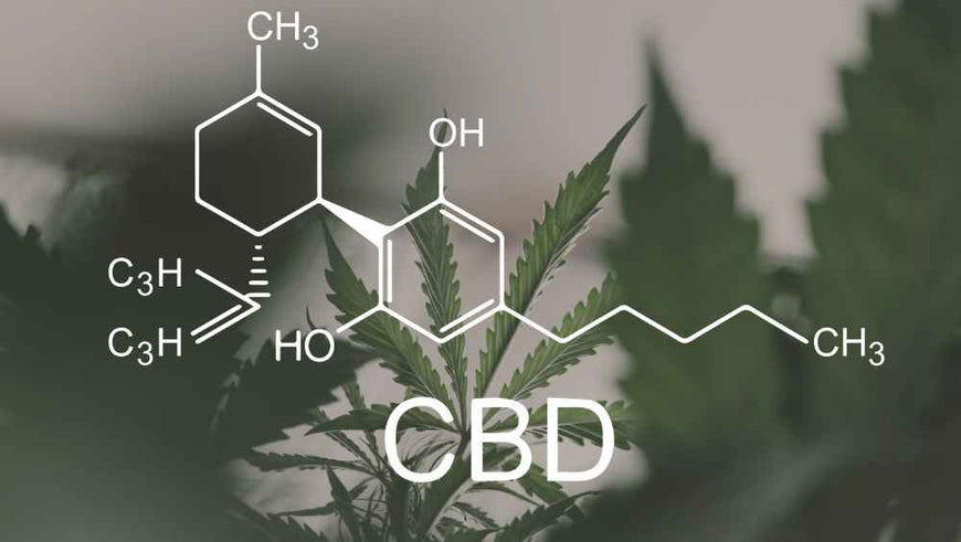 Does CBD oil get you high? How can you tell?