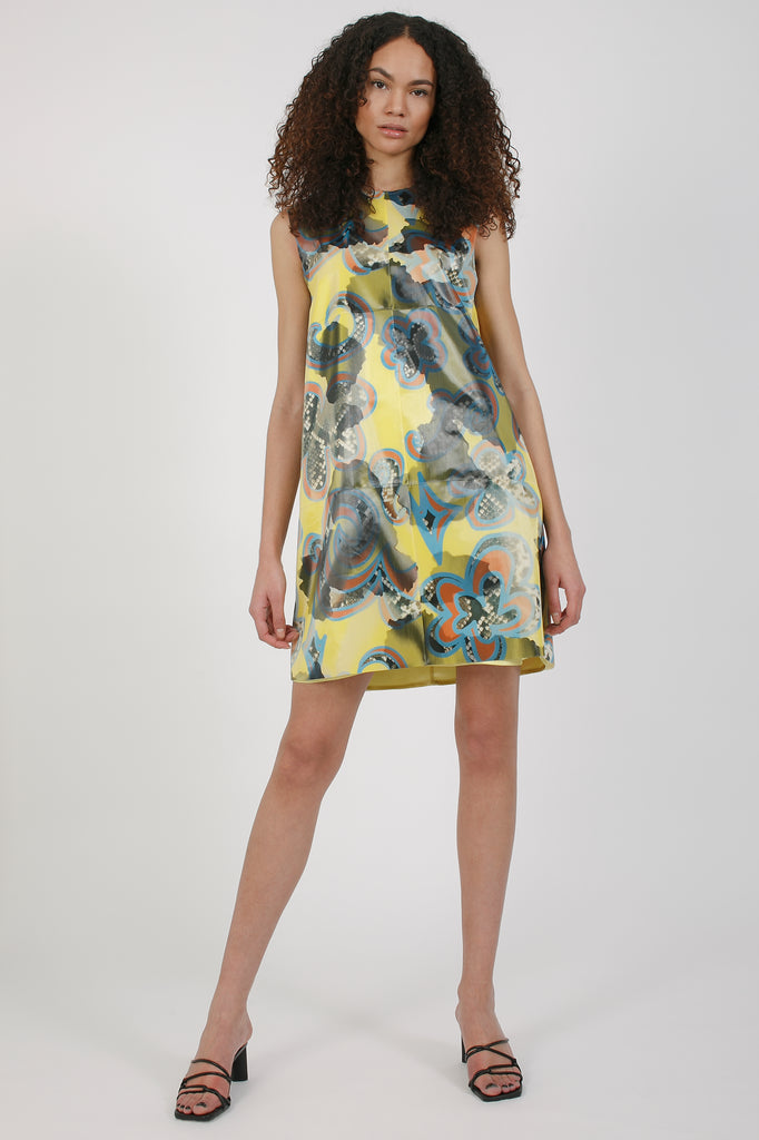 Lenticular Paisley Cow Dress