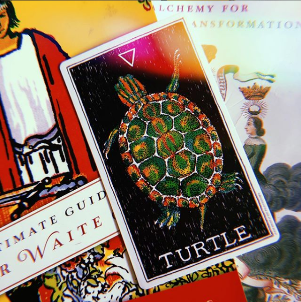 Daily Tarot Pull for 🐢 May 23, 2k19 🐢