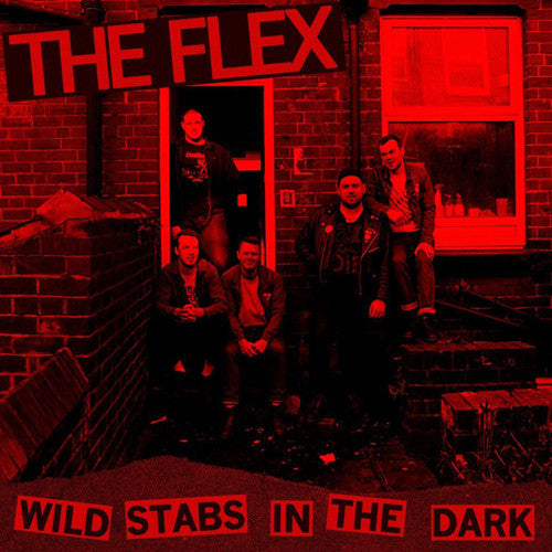 "FLEX, THE ""Wild Stabs in the Dark"" LP"