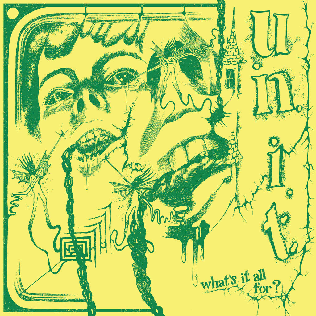 "U.N.I.T. ""What's It All For?"" LP"
