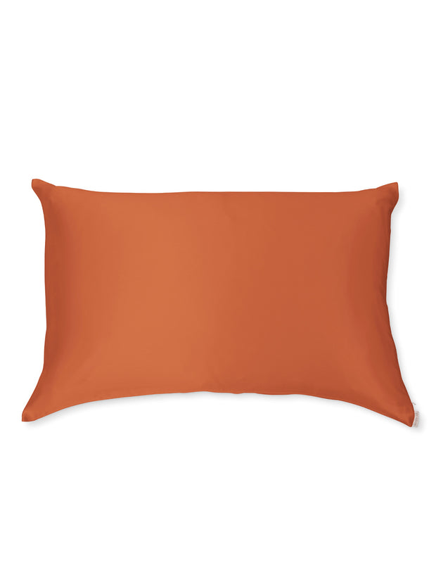 Sleepy Silk, Silk Pillowcase - Terracotta Brown (SS-PC-BR00), Silky Tots Double Sided Silk Pillow Slip, Pawda Baby 100% Mulberry Silk Junior or Adult Pillow Case, Slip Pillowcase, SHHH Silk Silk Pillowcase, Blissy Silk Pillowcase