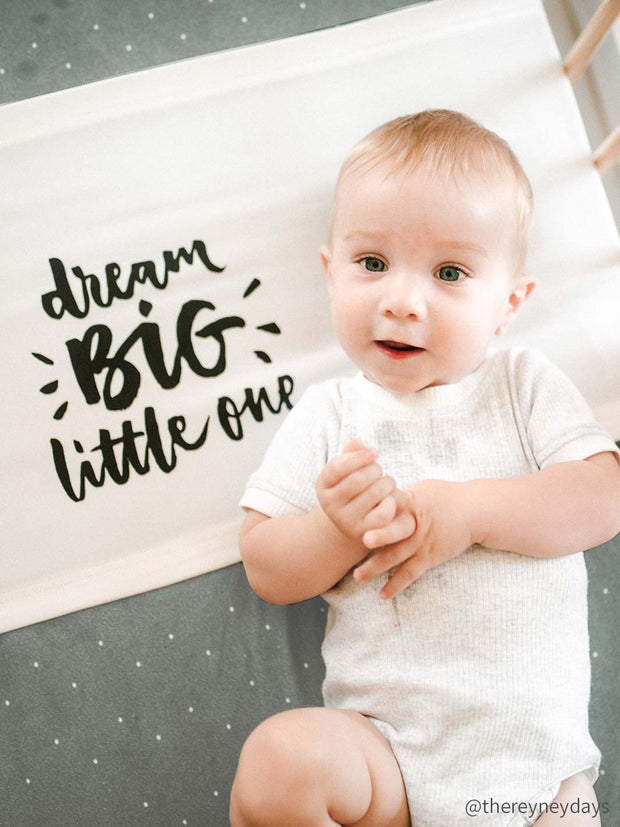 Sleepy Silk, Silk Sleeve for Cots / Cribs - Dream Big White - pattern (SS-CS-WH01) for baby hair loss and baby bald spots, Silky Tots Silk Cot Slip, Pawda Baby 100% Mulberry Silk Cot Semi Sheet, Monday Silks, Baby Tresses Cot Bed Sheet