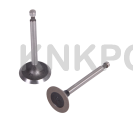 47.A-402 INTAKE AND EXHAUST VALVE HONDA GX160 200