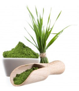 Wheatgrass Powder (Organic) ( 64 g. -  30 Servings )