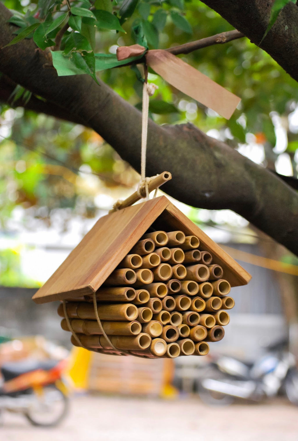 Hanging Bee House