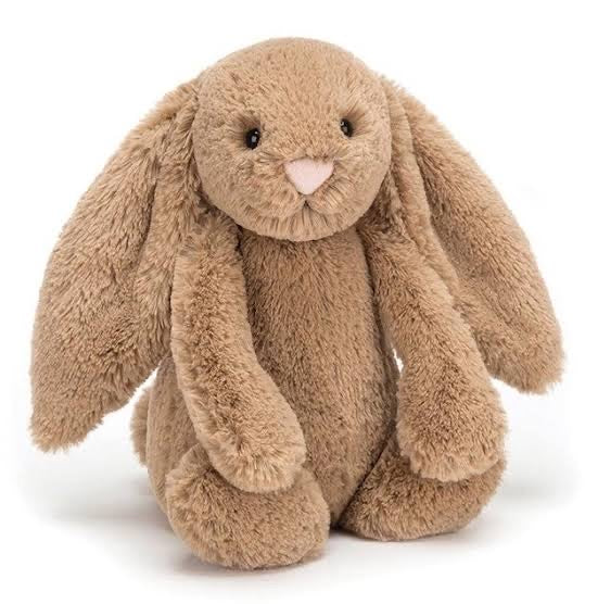 BASHFUL BISCUIT BUNNY - MEDIUM