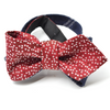 Red Confetti // Striped Reversible Bow Tie