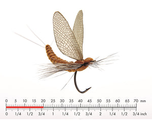 Mayfly Dun 2 Cinnamon Brown Fly