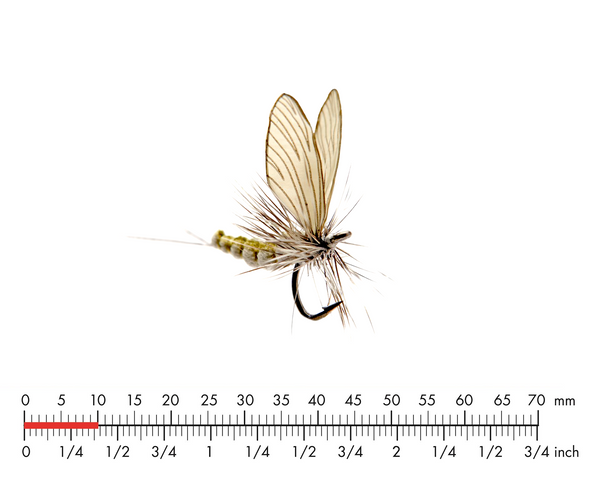 Mayfly Dun 4 Olive Grey Fly