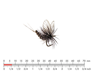 Mayfly Dun 5 Black Fly