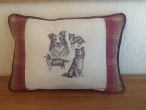 Border Collie Cushion - Border Collie Cushion