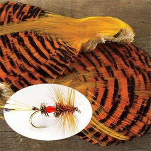 Golden Pheasant Complete Head - killerloopflyfishing Fly Fishing Tackle Outfitter & Guiding Service