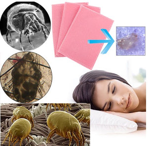 Dust Mite Protector Pad