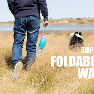 Portable Dog Water Bottle - DEAL OF THE WEEK