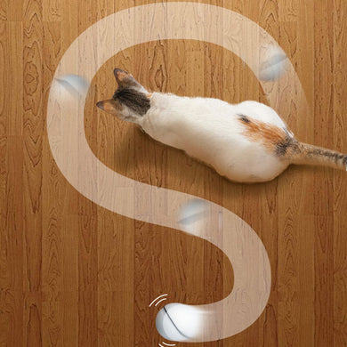 Self Rotating Cat Toy