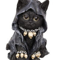 Witch Cat in Robe