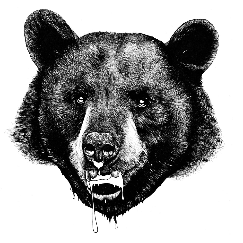 Grizzly<br><h5> by Tom Baxter</h5>