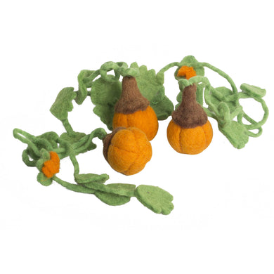 Food - Mini Pumpkin (3 pieces)