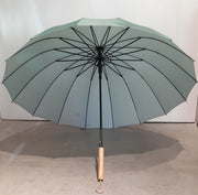 Case Study Umbrella