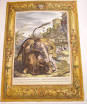 Picart, Bernard (1673 - 1733): ACHELOUS AS A BULL BEING VANQUISHED BY HERUCLES