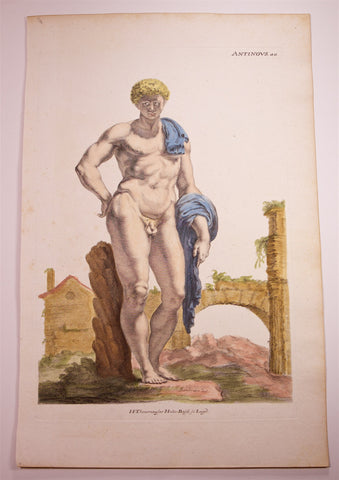 Sandrart, Joachim von (1606-1688): ANTINOUS - LARGE Folio handcolored Engraving