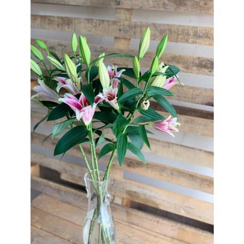 Upscale & Posh Tall Lilies Bouquet