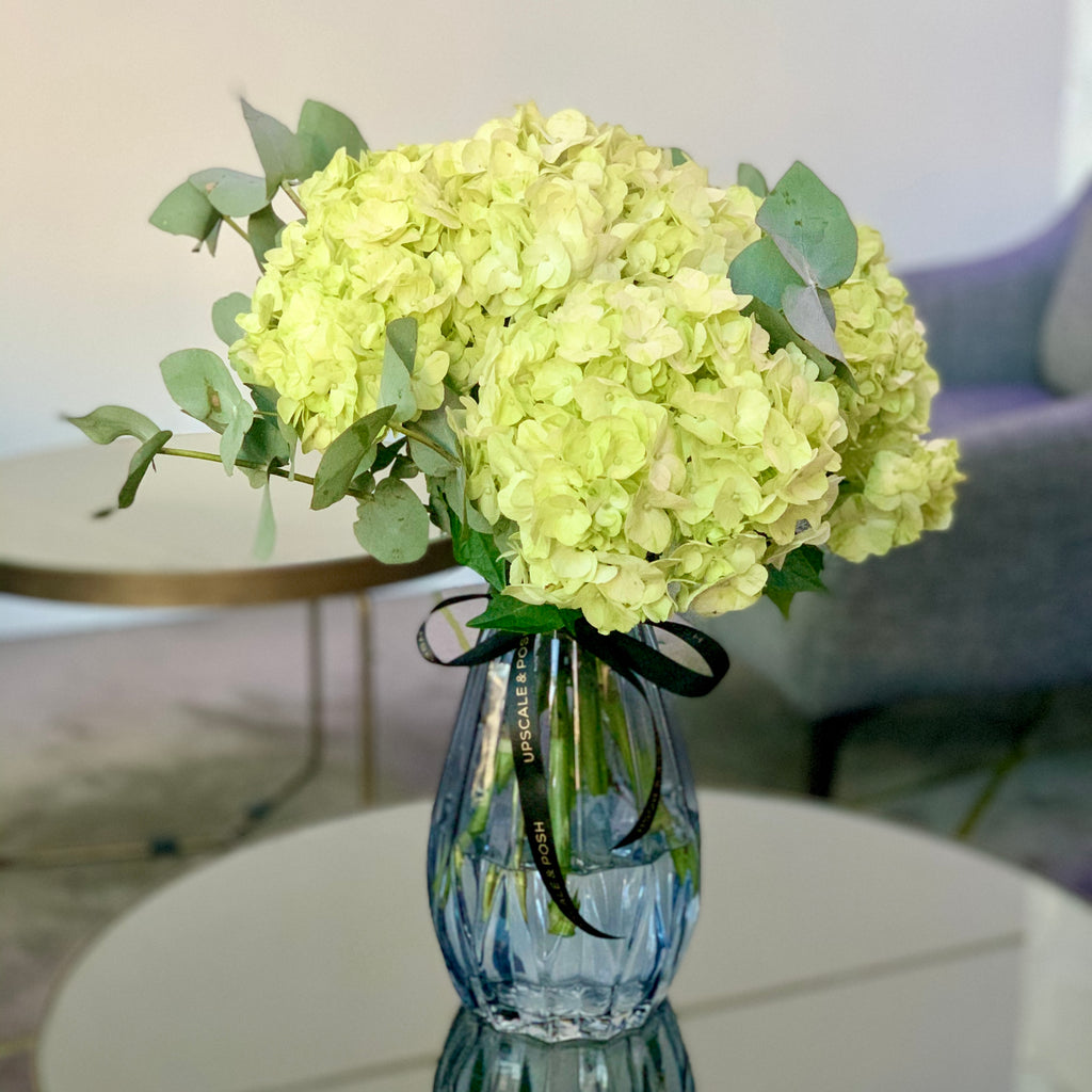 Designer's Collection #3 - Lime Hydrangea