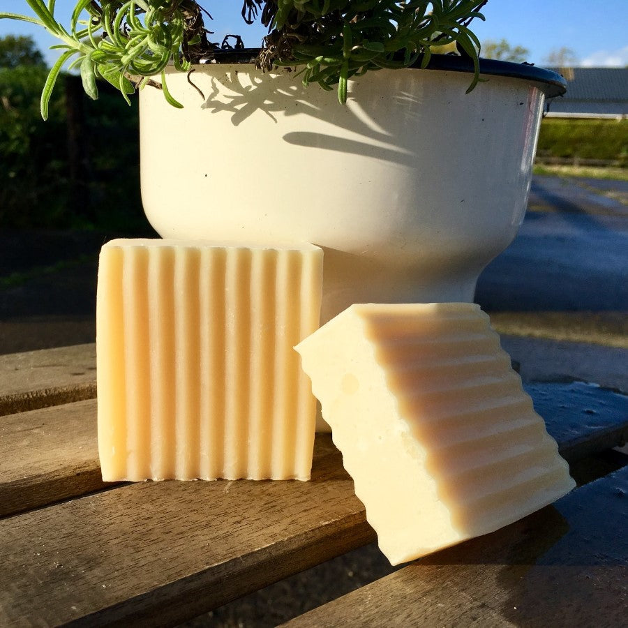 Pure Shampoo - Horse & Dog Shampoo Bar