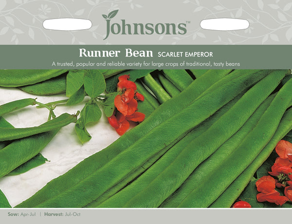 Johnsons 120999 Phaseolus coccineus - Runner Bean Scarlet Emperor
