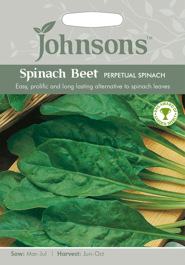 Johnsons 121000 Beta vulgaris - Spinach Beet Perpetual Spinach