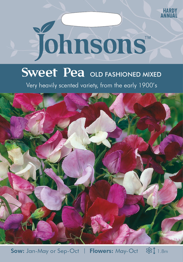 Johnsons 121004 Lathyrus odoratus - Sweet Pea Old Fashioned Mixed