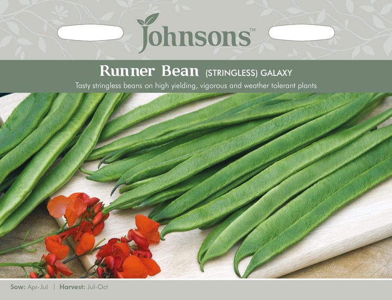 Johnsons 121023 Phaseolus coccineus - Runner Bean Galaxy (Stringless)