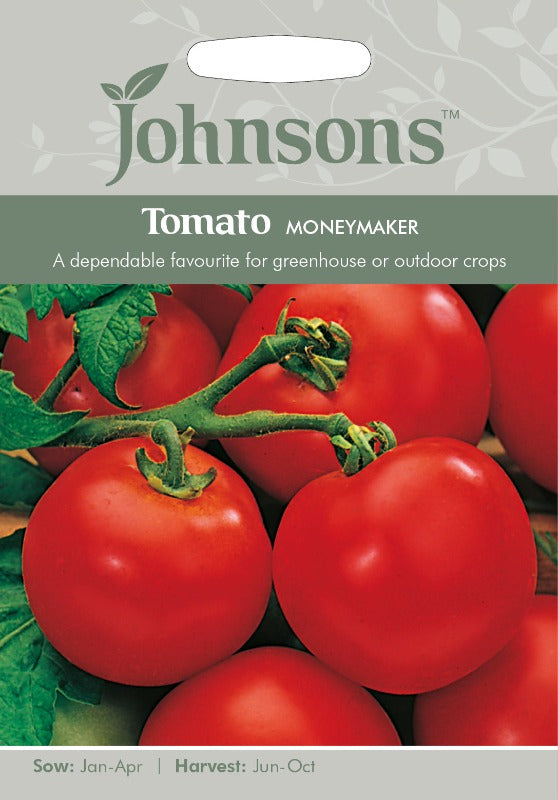 Johnsons 121035 Lycopersicon lycopersicum - Tomato Moneymaker