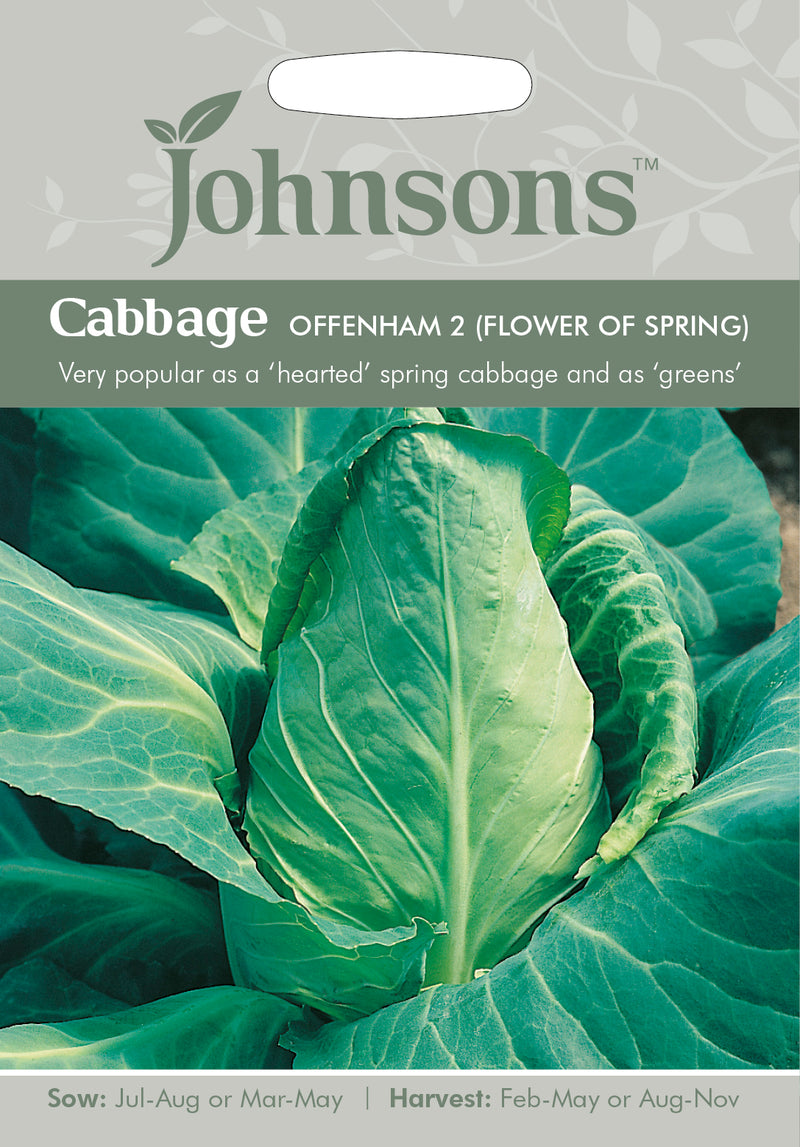 Johnsons 121050 Brassica oleracea Capitata - Cabbage Offenham 2 (Flower of Spring)