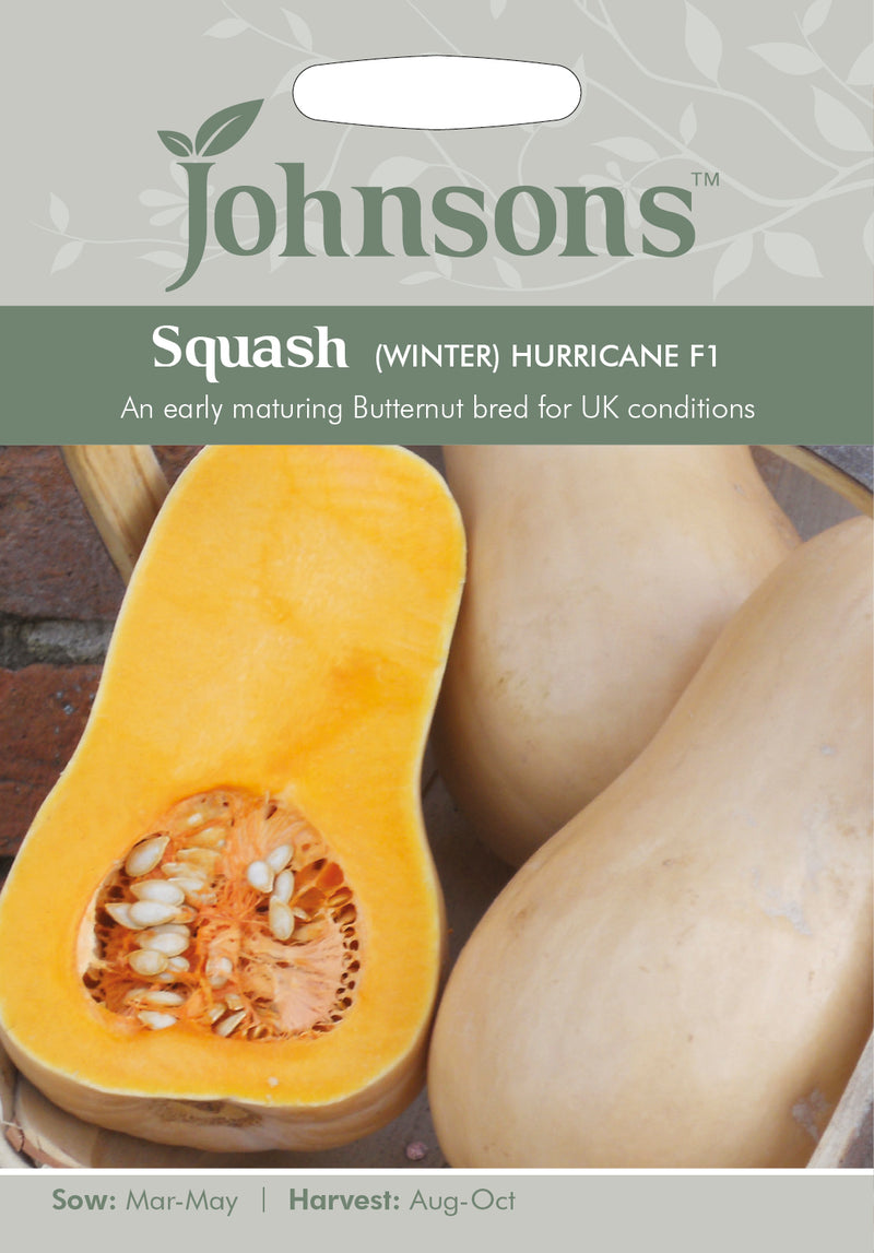 Johnsons 121061 Cucurbita x hybrida - Squash (Butternut) Hurricane F1