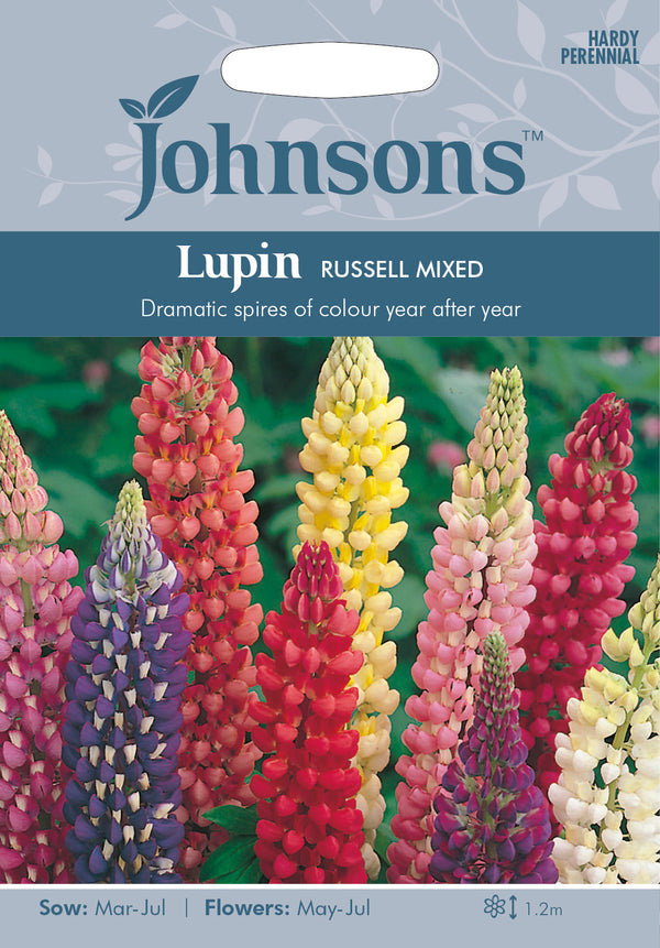 Johnsons 121068 Lupinus polyphyllus - Lupin Russell Mixed