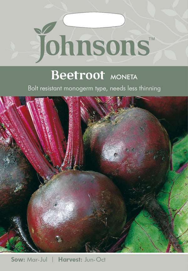 Johnsons 121076 Beta vulgaris - Beetroot Moneta