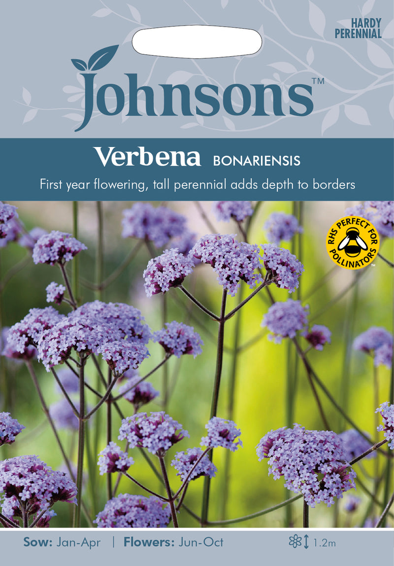 Johnsons 121079 Verbena bonariensis - Verbena